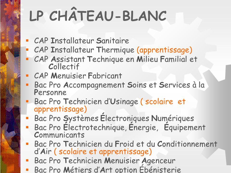 LP CHÂTEAU-BLANC CAP Installateur Sanitaire