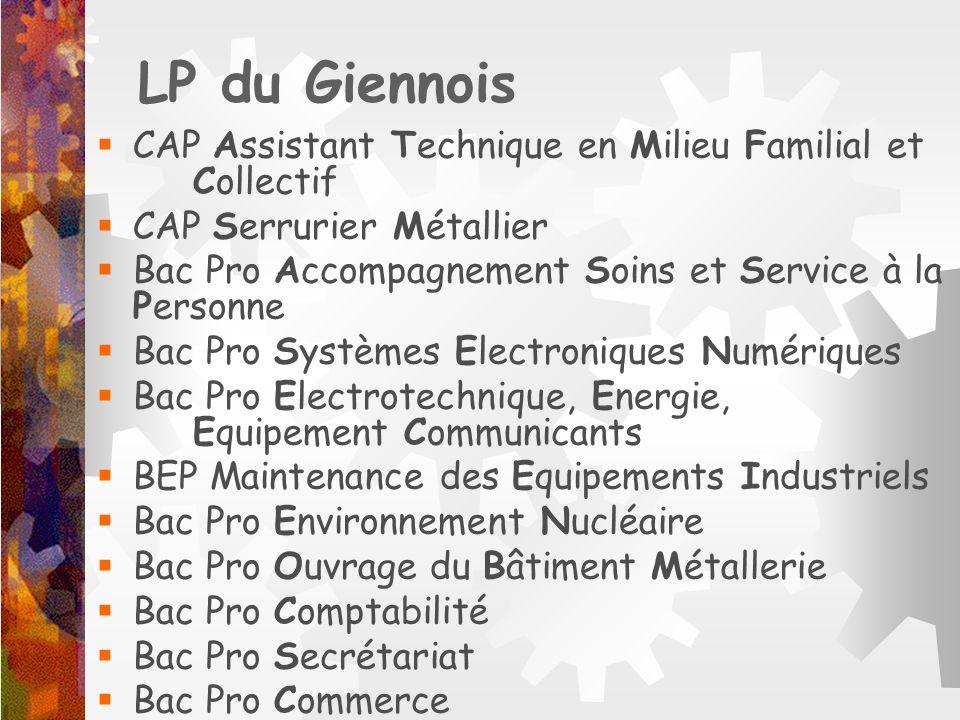 LP du Giennois CAP Assistant Technique en Milieu Familial et Collectif