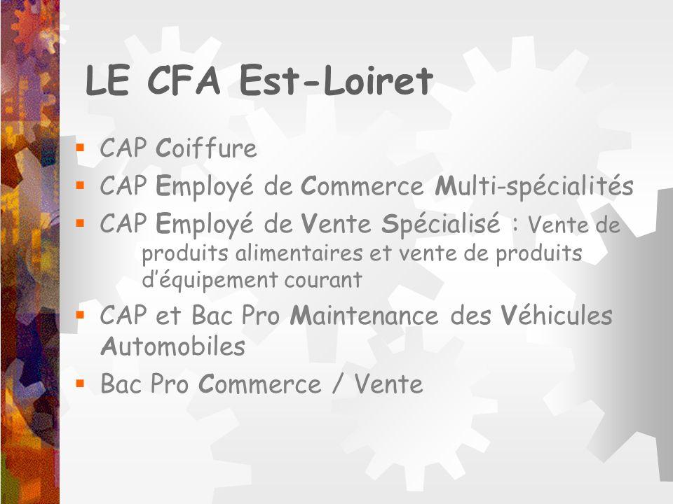 LE CFA Est-Loiret CAP Coiffure