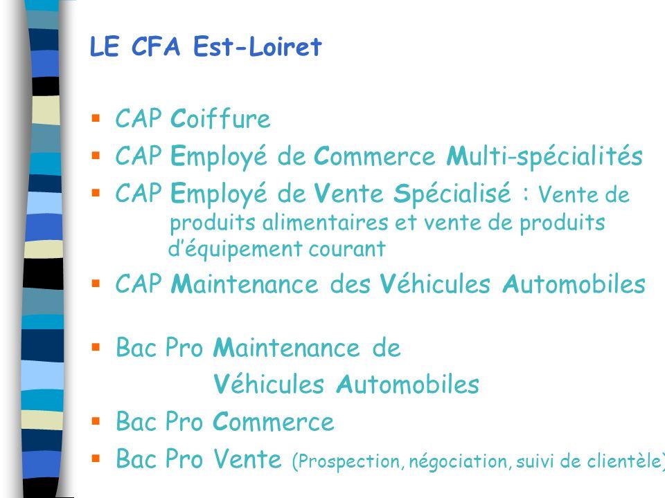 LE CFA Est-Loiret CAP Coiffure. CAP Employé de Commerce Multi-spécialités.