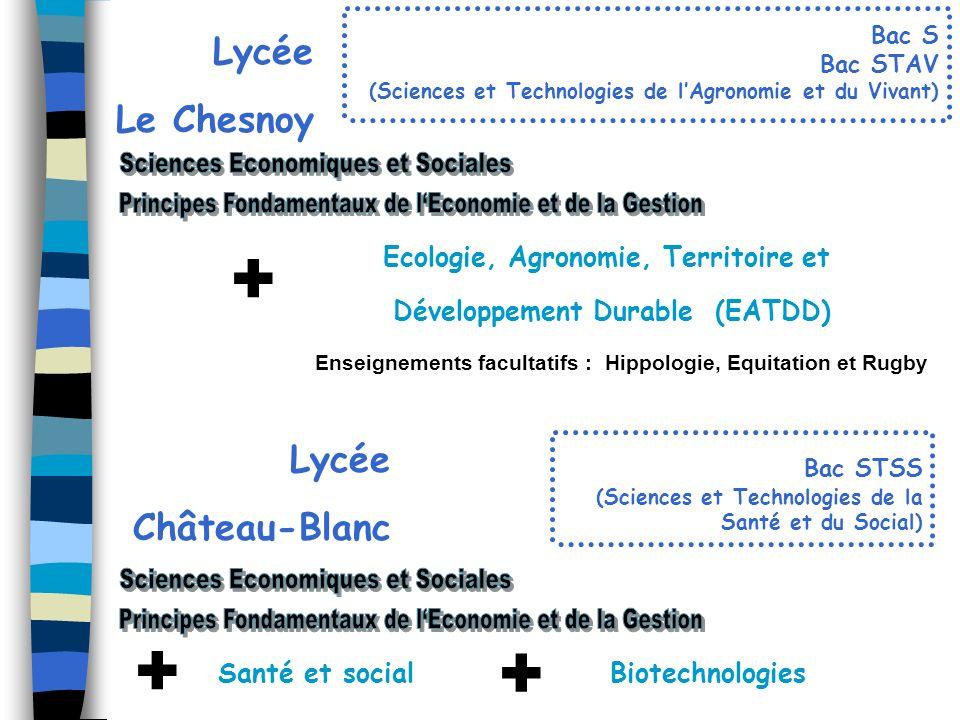 + + + Sciences Economiques et Sociales