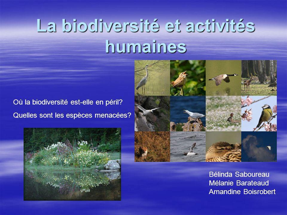 La biodiversité et activités humaines