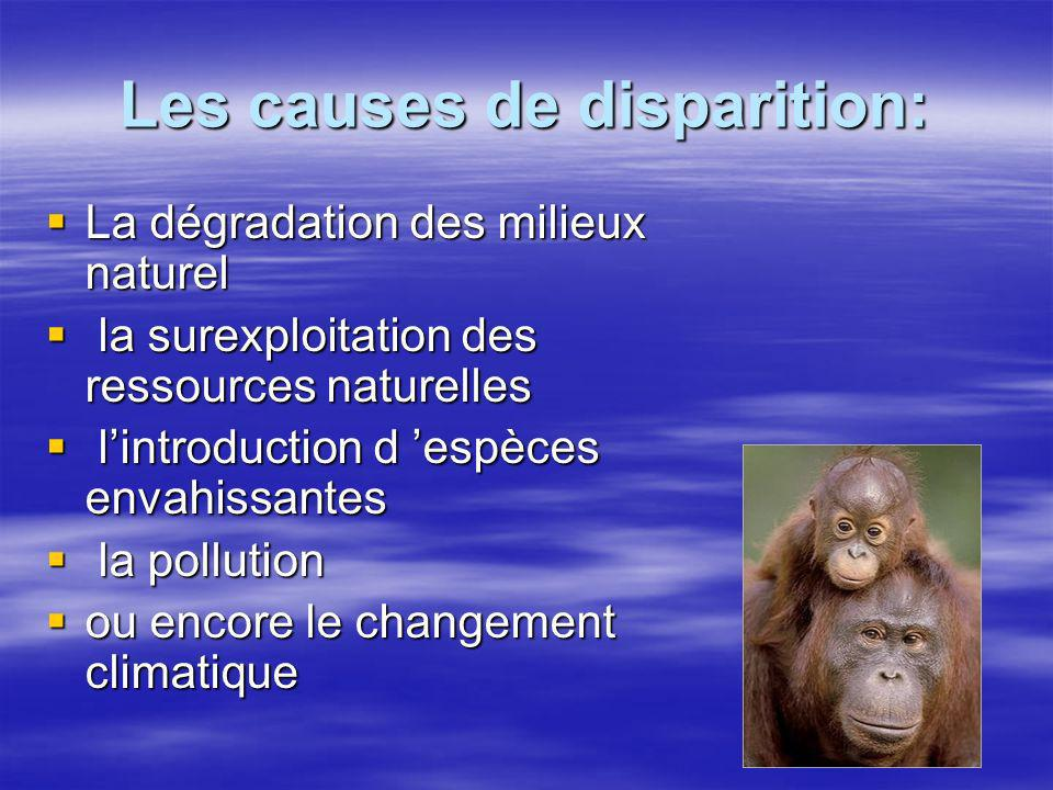 Les causes de disparition: