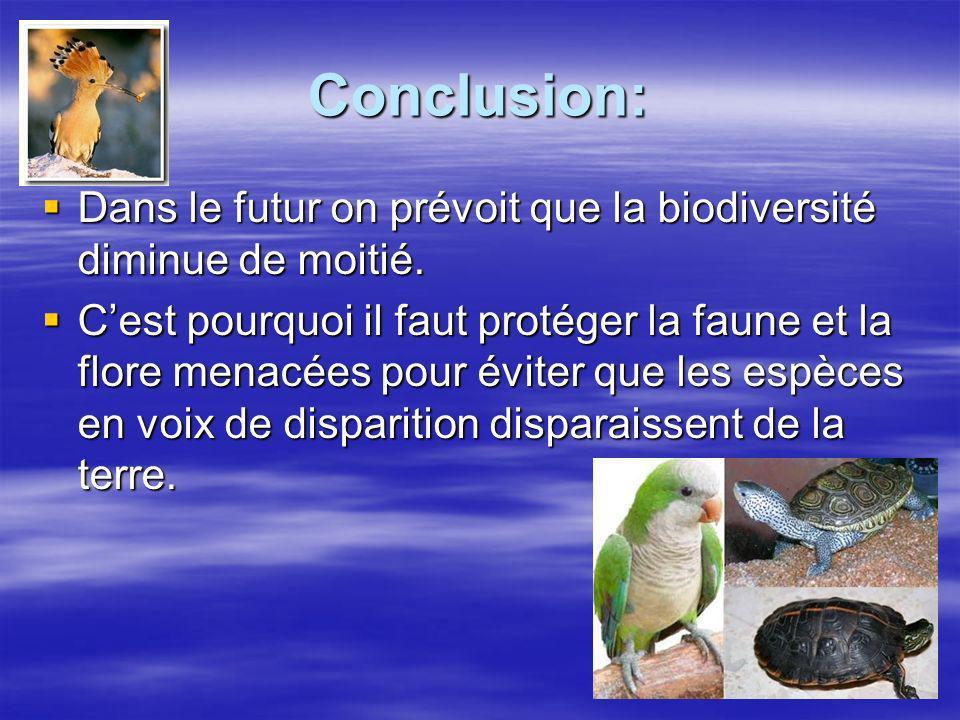 Conclusion: Dans le futur on prévoit que la biodiversité diminue de moitié.