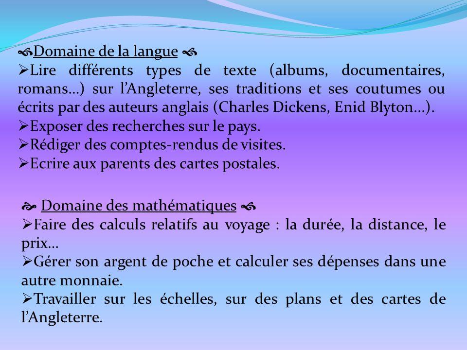 Domaine de la langue 