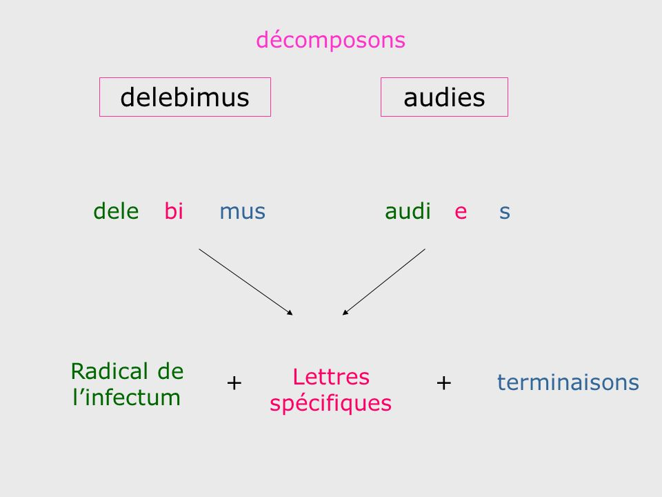 delebimus audies décomposons dele bi mus audi e s
