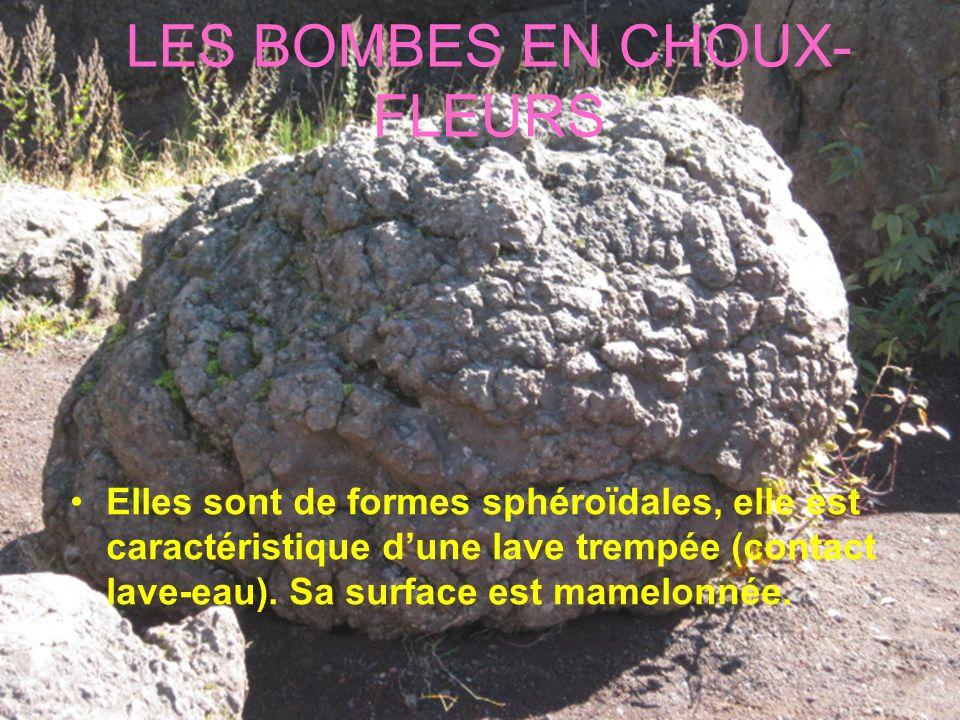 LES BOMBES EN CHOUX-FLEURS