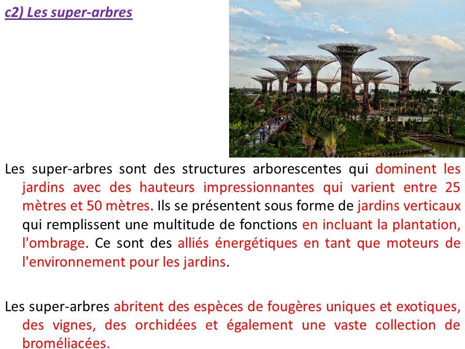 c2) Les super-arbres Les super-arbres sont des structures arborescentes qui dominent les jardins avec des hauteurs impressionnantes qui varient entre 25 mètres et 50 mètres.