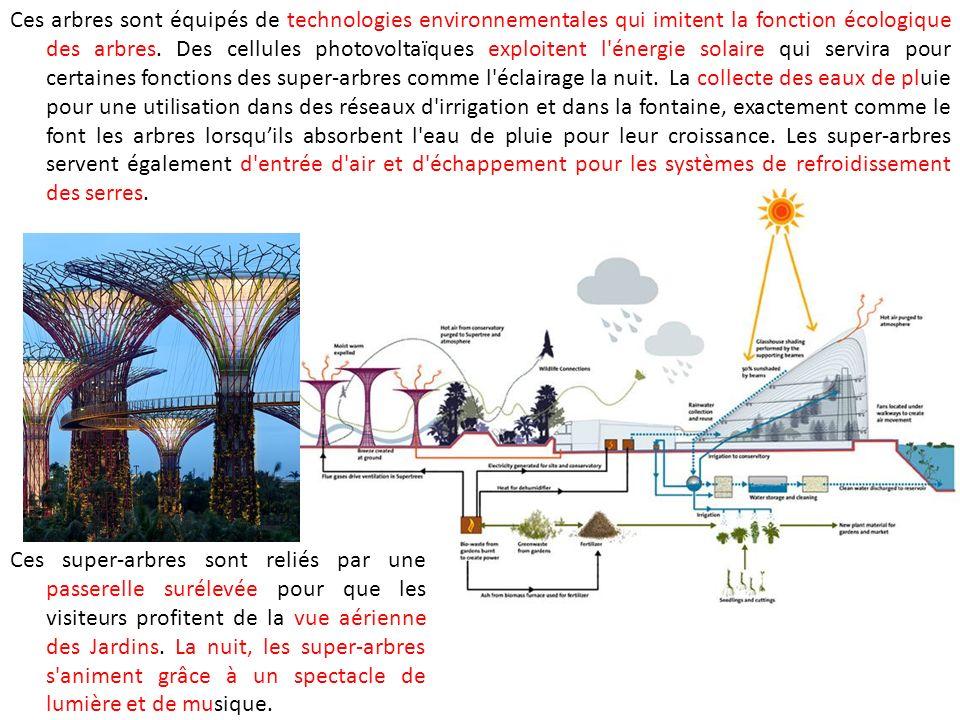 Ces arbres sont équipés de technologies environnementales qui imitent la fonction écologique des arbres. Des cellules photovoltaïques exploitent l énergie solaire qui servira pour certaines fonctions des super-arbres comme l éclairage la nuit. La collecte des eaux de pluie pour une utilisation dans des réseaux d irrigation et dans la fontaine, exactement comme le font les arbres lorsqu'ils absorbent l eau de pluie pour leur croissance. Les super-arbres servent également d entrée d air et d échappement pour les systèmes de refroidissement des serres.
