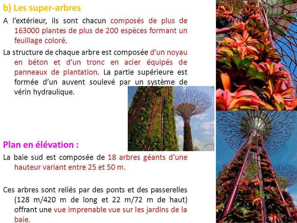 b) Les super-arbres Plan en élévation :