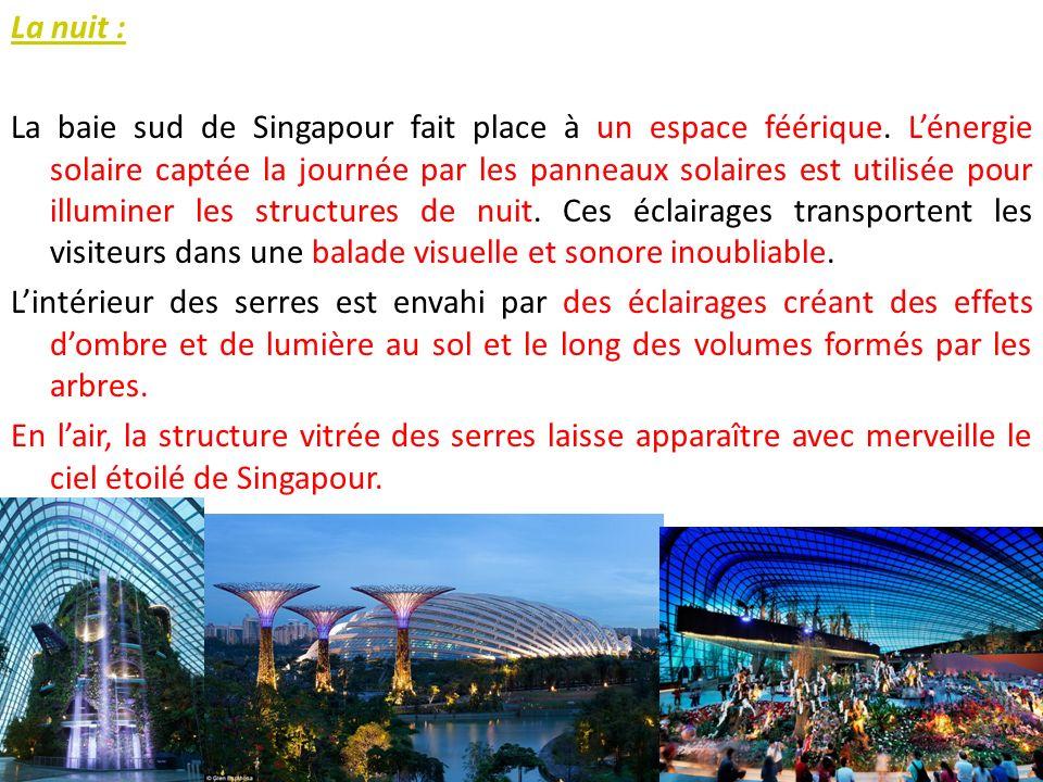 La nuit : La baie sud de Singapour fait place à un espace féérique