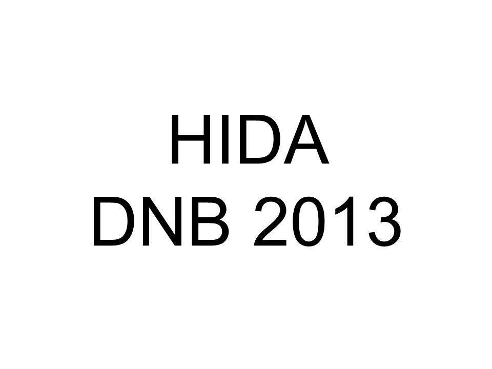 HIDA DNB 2013