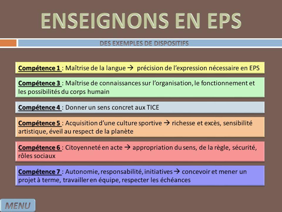 DES EXEMPLES DE DISPOSITIFS