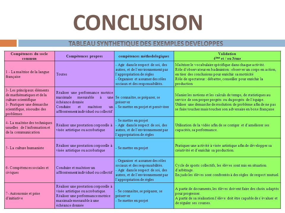 CONCLUSION TABLEAU SYNTHETIQUE DES EXEMPLES DEVELOPPES