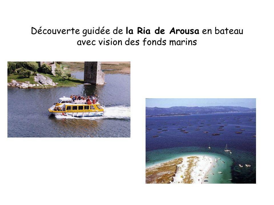 Découverte guidée de la Ria de Arousa en bateau avec vision des fonds marins
