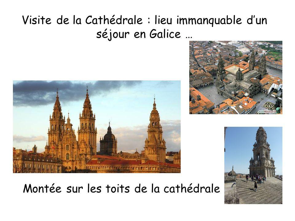 Visite de la Cathédrale : lieu immanquable d'un séjour en Galice …