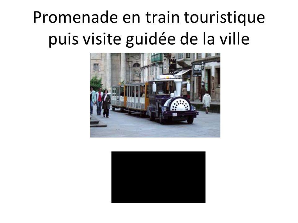 Promenade en train touristique puis visite guidée de la ville