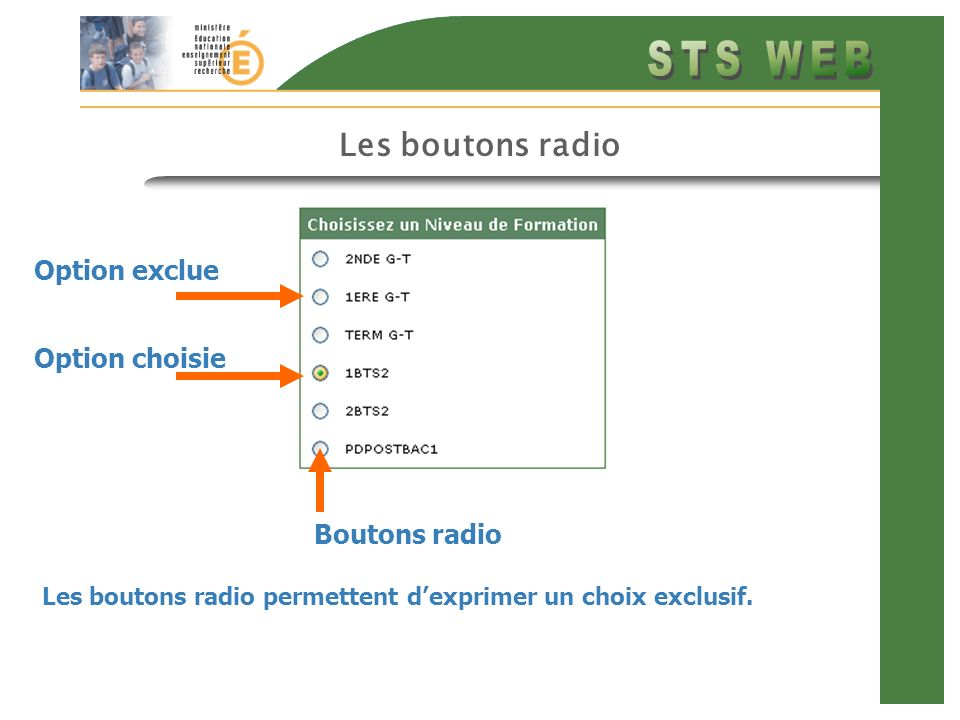 Les boutons radio Option exclue Option choisie Boutons radio
