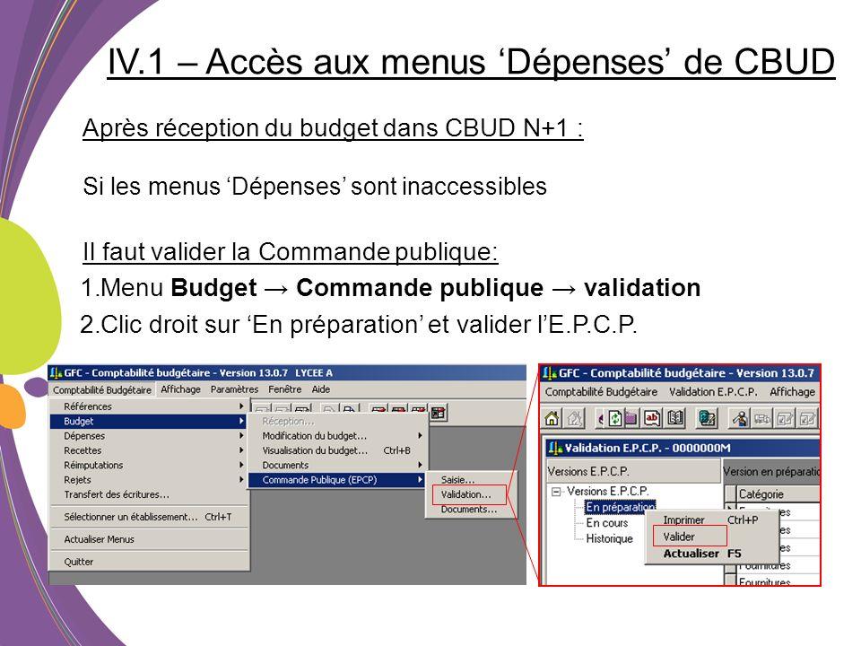 IV.1 – Accès aux menus 'Dépenses' de CBUD