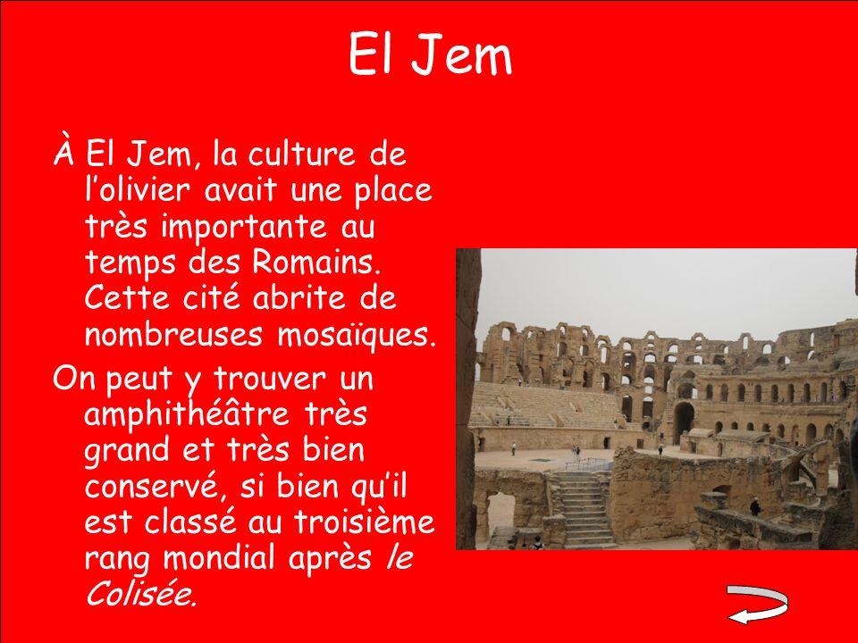 El Jem À El Jem, la culture de l'olivier avait une place très importante au temps des Romains. Cette cité abrite de nombreuses mosaïques.