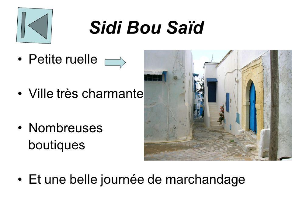 Sidi Bou Saïd Petite ruelle Ville très charmante Nombreuses boutiques