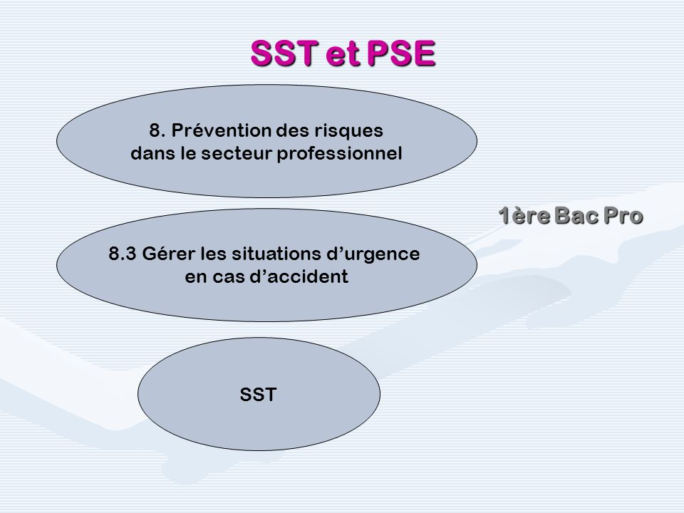 SST et PSE 1ère Bac Pro 8. Prévention des risques