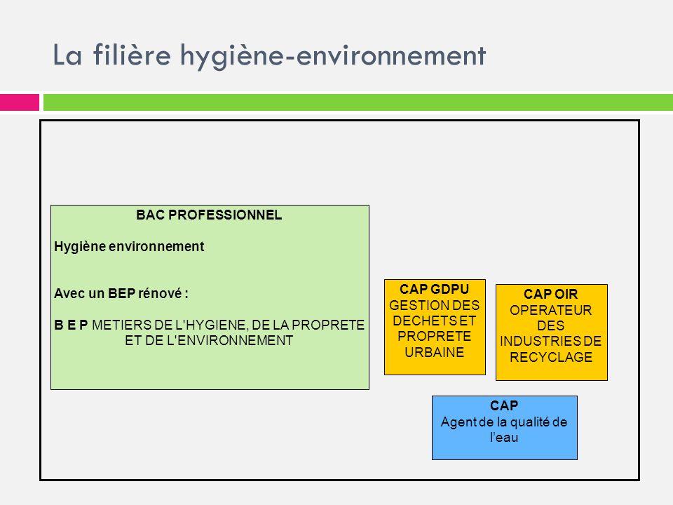 La filière hygiène-environnement