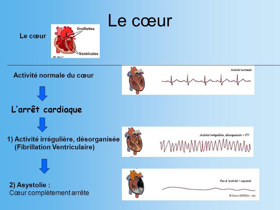 Le cœur L'arrêt cardiaque Le cœur Activité normale du cœur