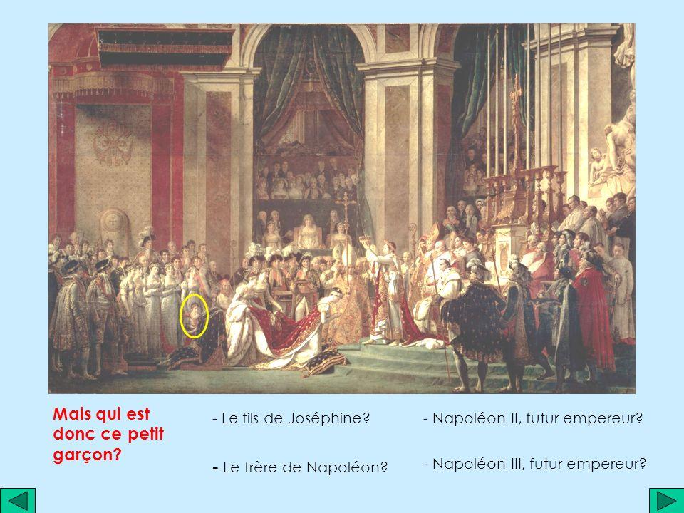 - Le frère de Napoléon Mais qui est donc ce petit garçon