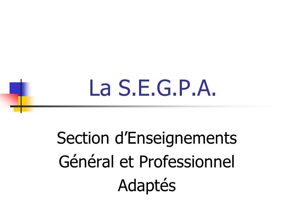 Section d'Enseignements Général et Professionnel Adaptés