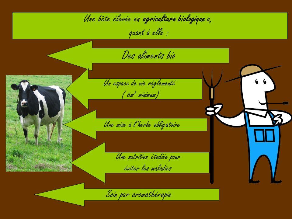 Des aliments bio Une bête élevée en agriculture biologique a,