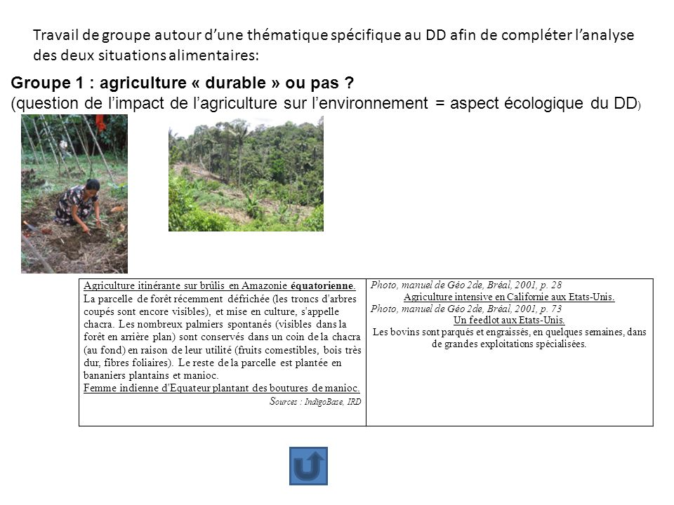 Groupe 1 : agriculture « durable » ou pas