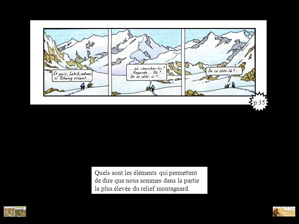 p 35 Quels sont les éléments qui permettent de dire que nous sommes dans la partie la plus élevée du relief montagnard.