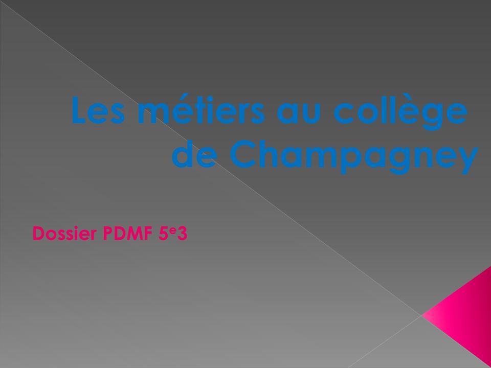 Les métiers au collège de Champagney Dossier PDMF 5e3