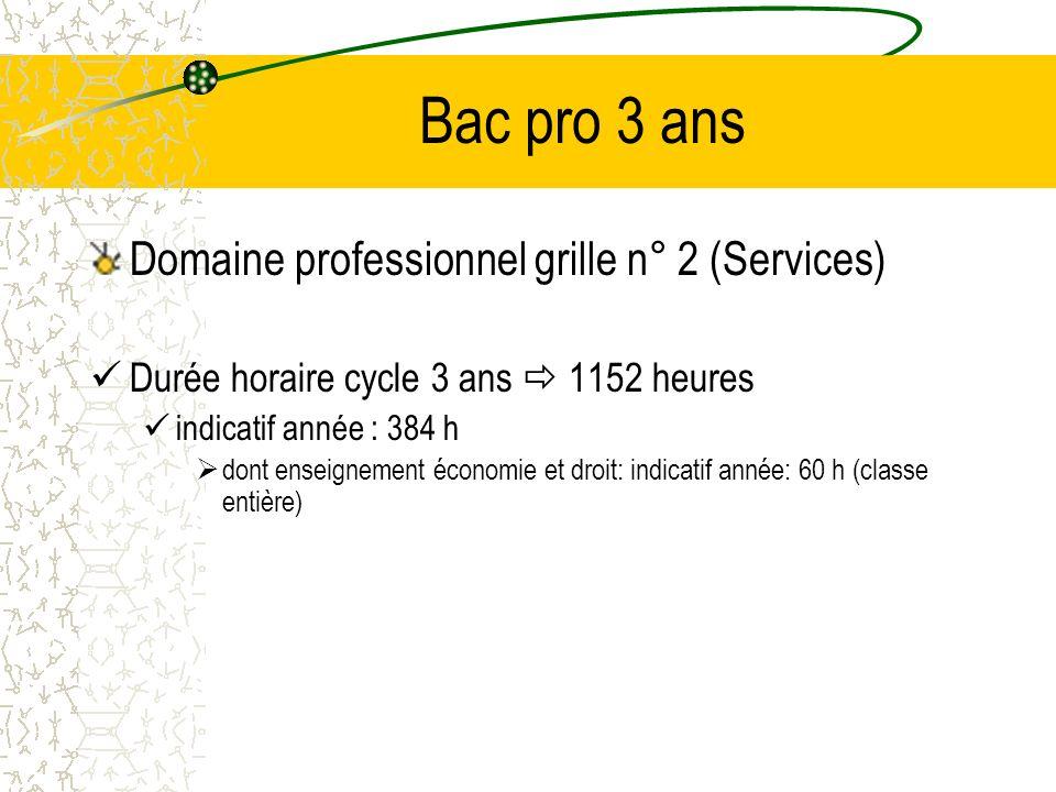 Bac pro 3 ans Domaine professionnel grille n° 2 (Services)
