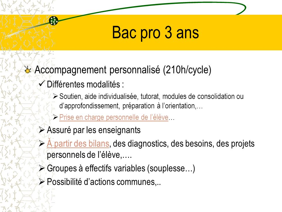 Bac pro 3 ans Accompagnement personnalisé (210h/cycle)