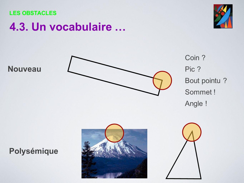 4.3. Un vocabulaire … Nouveau Polysémique Coin Pic Bout pointu