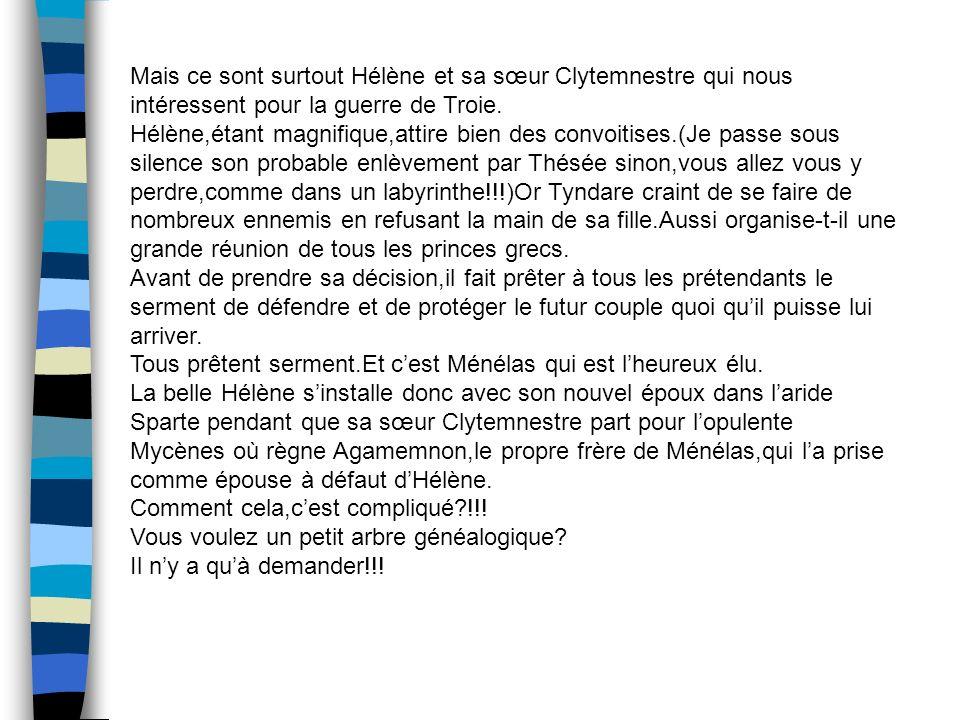 Mais ce sont surtout Hélène et sa sœur Clytemnestre qui nous intéressent pour la guerre de Troie.
