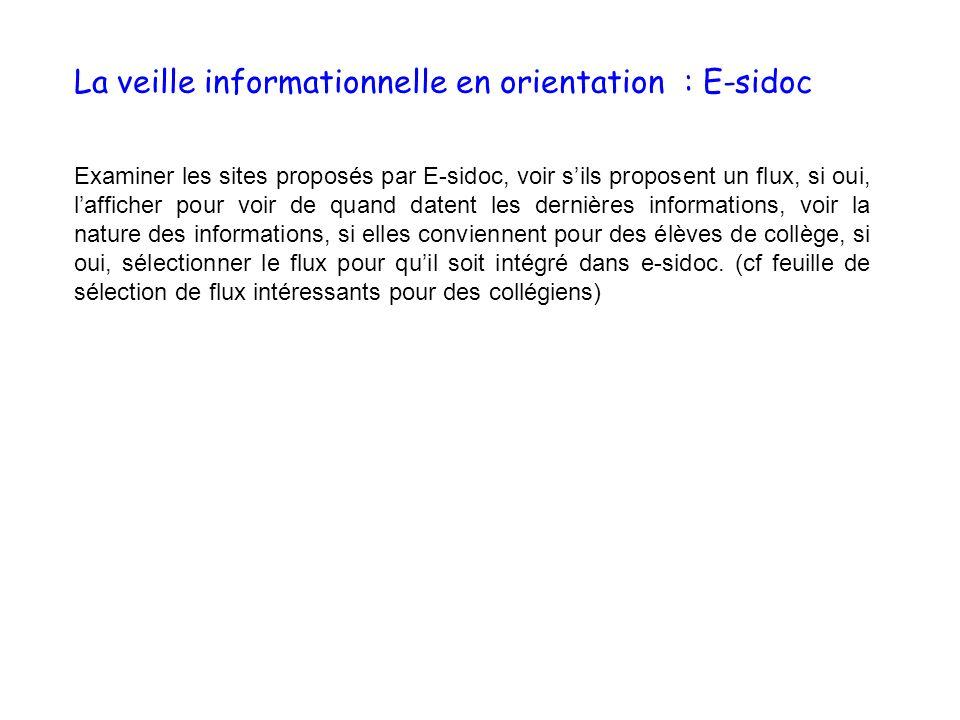 La veille informationnelle en orientation : E-sidoc