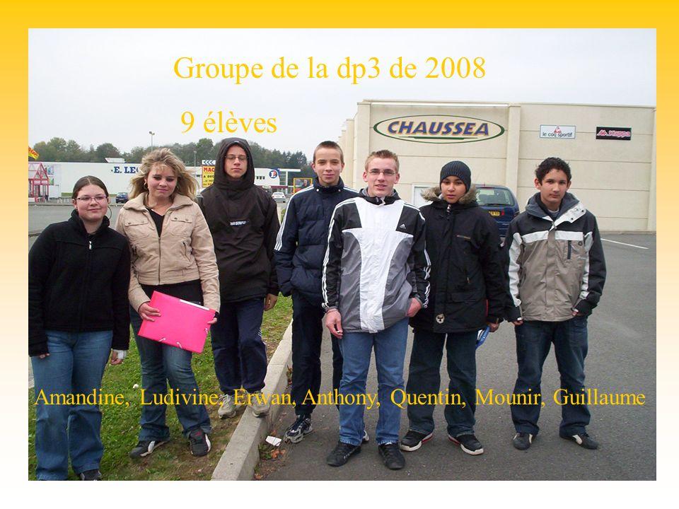 Groupe dp3 Groupe de la dp3 de 2008 9 élèves