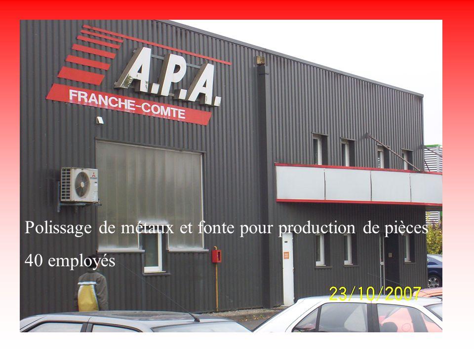 Apa Polissage de métaux et fonte pour production de pièces 40 employés