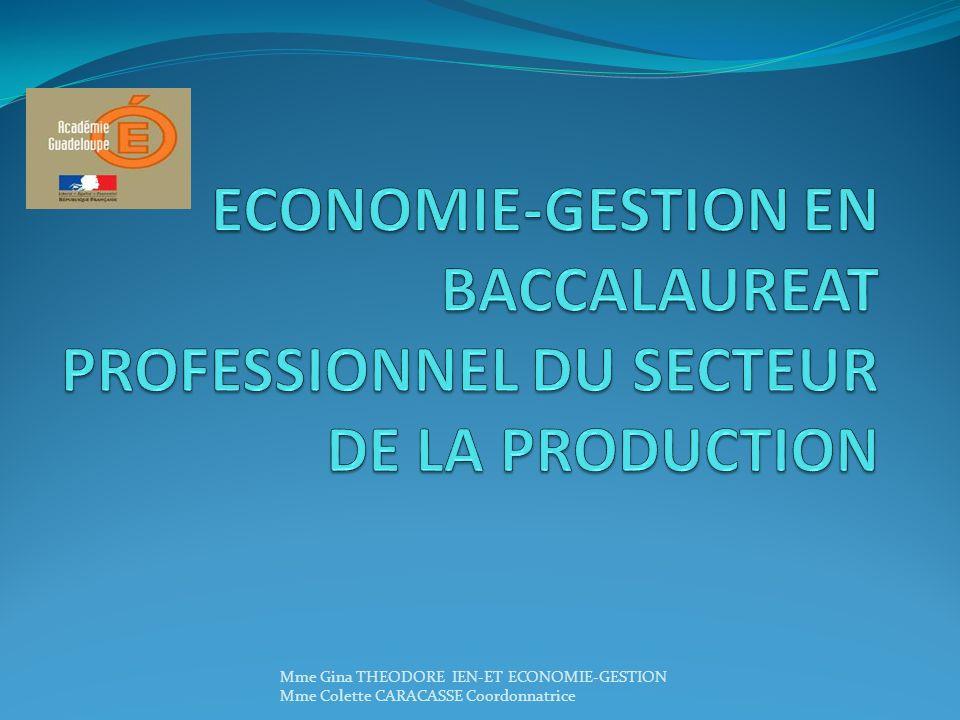ECONOMIE-GESTION EN BACCALAUREAT PROFESSIONNEL DU SECTEUR DE LA PRODUCTION