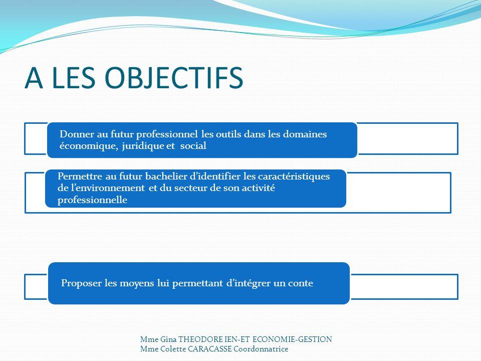 A LES OBJECTIFS Donner au futur professionnel les outils dans les domaines économique, juridique et social.