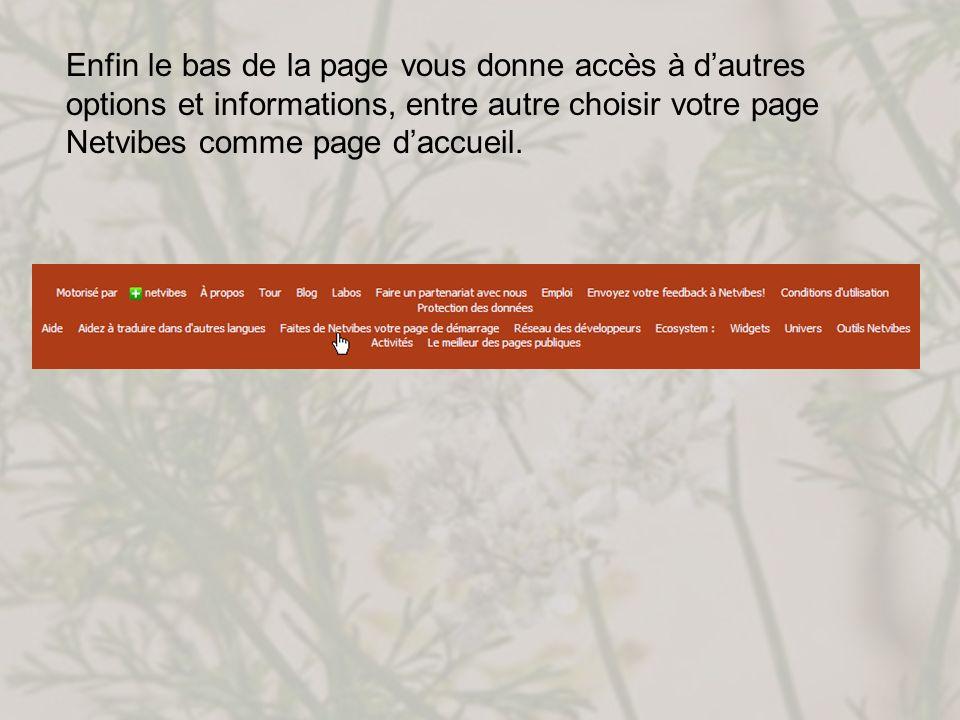 Enfin le bas de la page vous donne accès à d'autres options et informations, entre autre choisir votre page Netvibes comme page d'accueil.