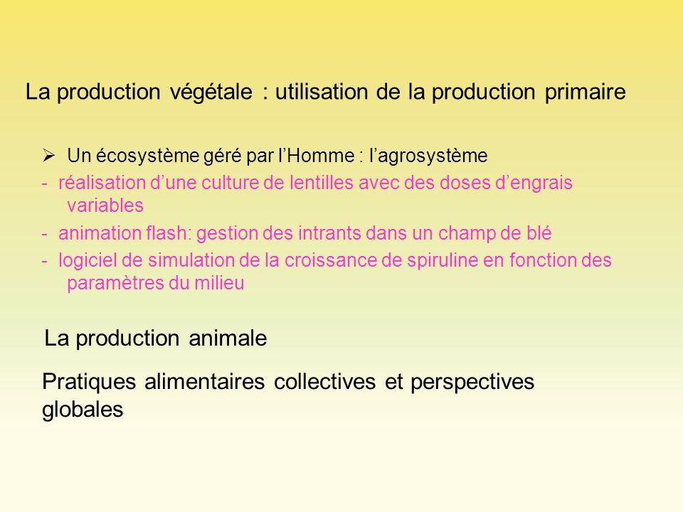 La production végétale : utilisation de la production primaire