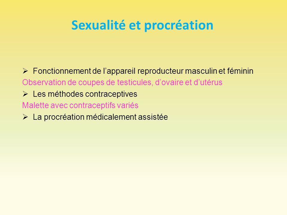 Sexualité et procréation