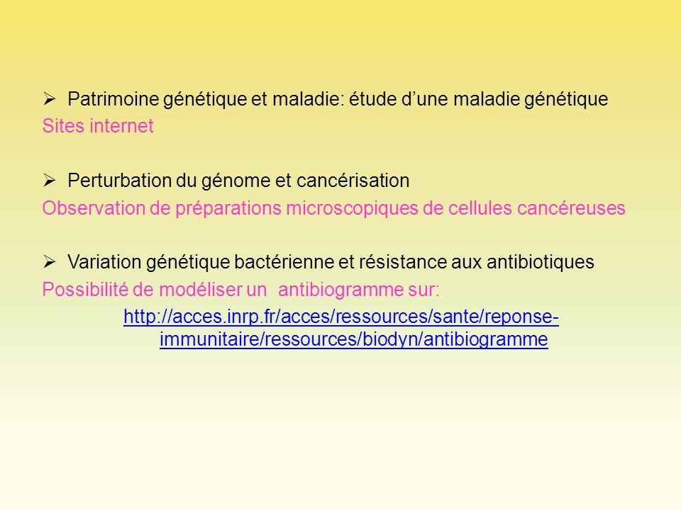 Patrimoine génétique et maladie: étude d'une maladie génétique