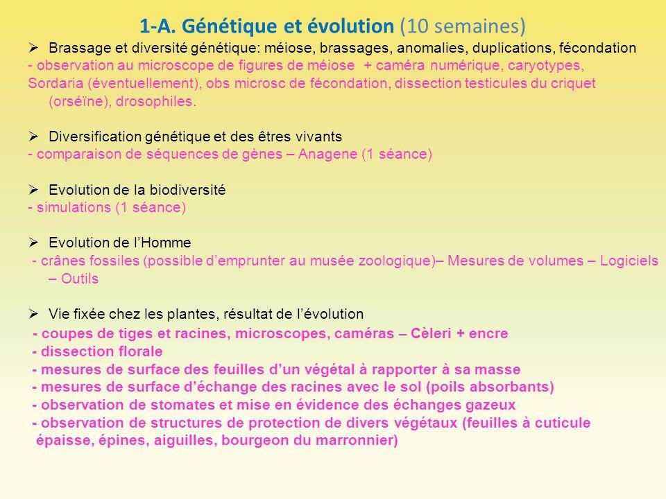 1-A. Génétique et évolution (10 semaines)