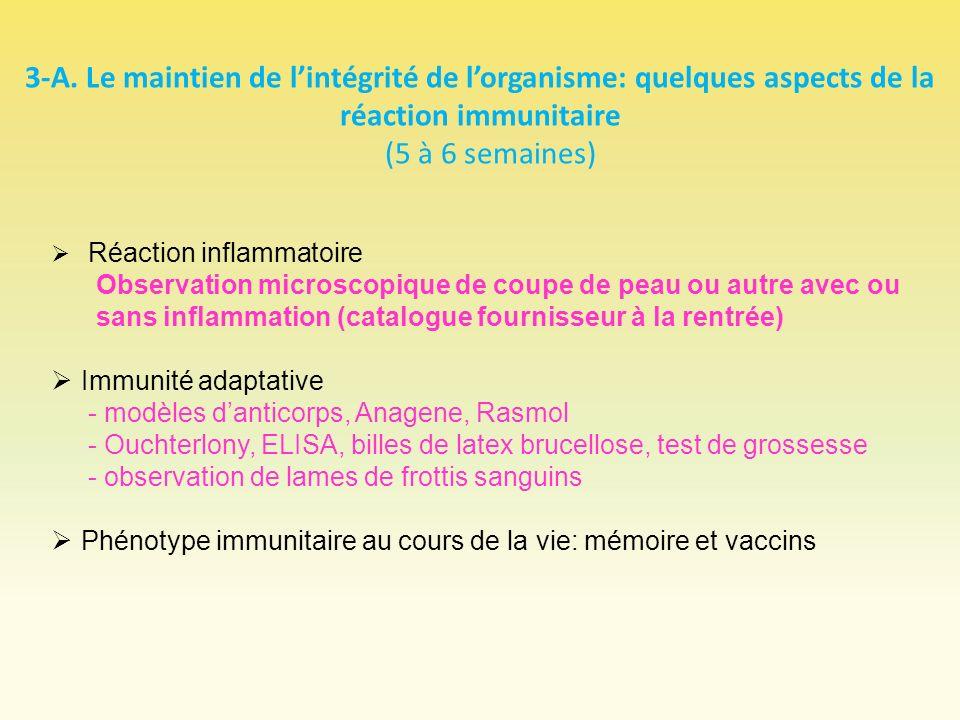 3-A. Le maintien de l'intégrité de l'organisme: quelques aspects de la réaction immunitaire (5 à 6 semaines)