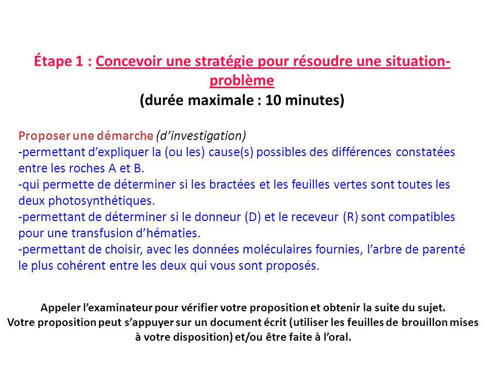 Étape 1 : Concevoir une stratégie pour résoudre une situation-problème